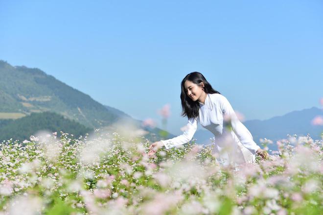 Danh tính cô gái xinh đẹp bên đồi hoa tam giác mạch gây sốt mạng xã hội